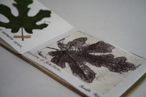 piccolo-libro-di-artista-con-foglia-di-fico-seccata