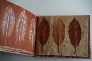 piccolo libro d'artista con piccola stampa con tre foglie secche